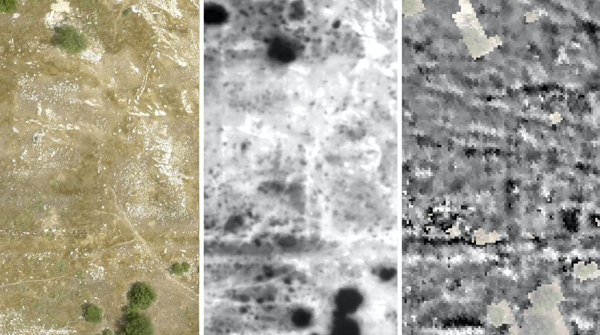 Rvtr notion survey triptych imaging