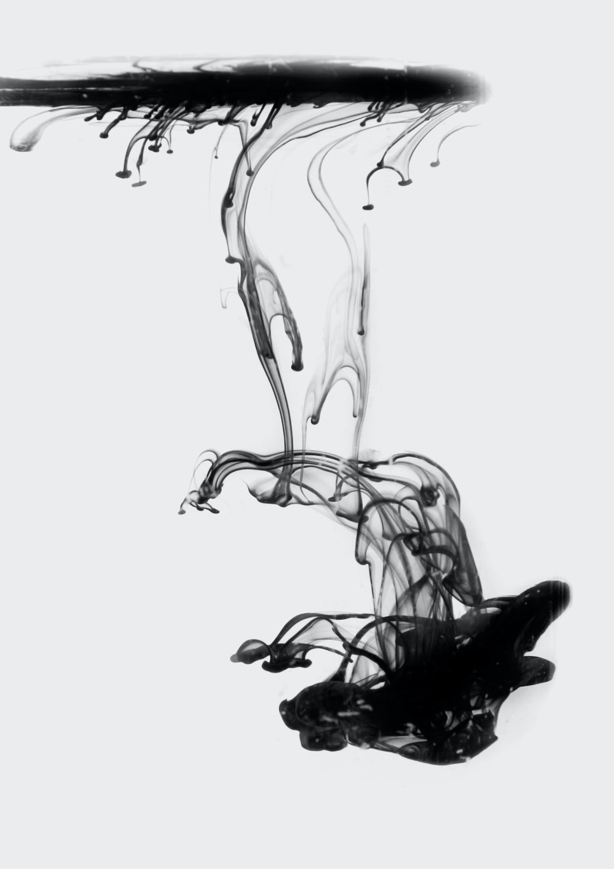 Feifei feng photography floating ink c4