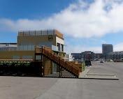 Pier50 day