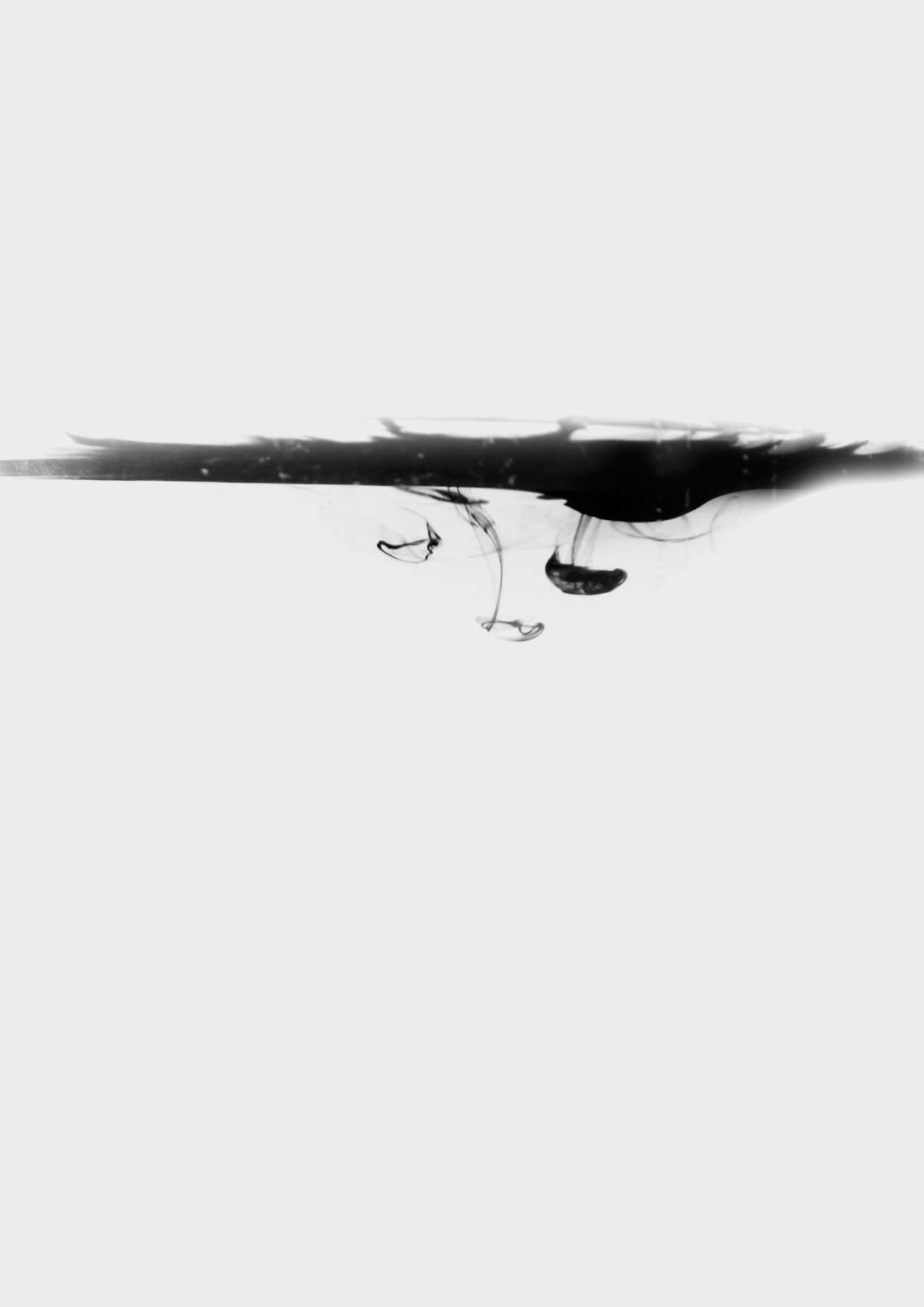 Feifei feng photography floating ink c1