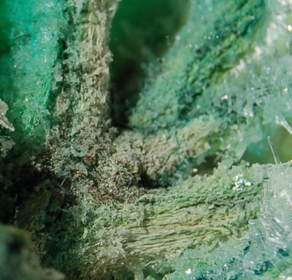 Algae crystals