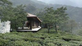 Tea cliff villa holiday home bulathsinhala sri lanka 06