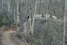 Modus studio coler mountain bike preserve 0560