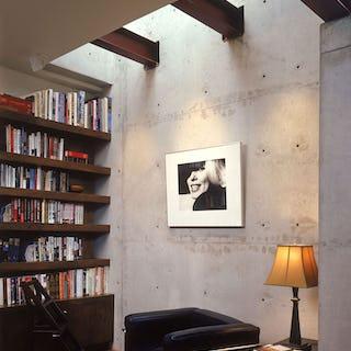 Ducharne belvedere library copy  1499471829 85897