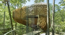 10 modus studio garvan tree house 0428