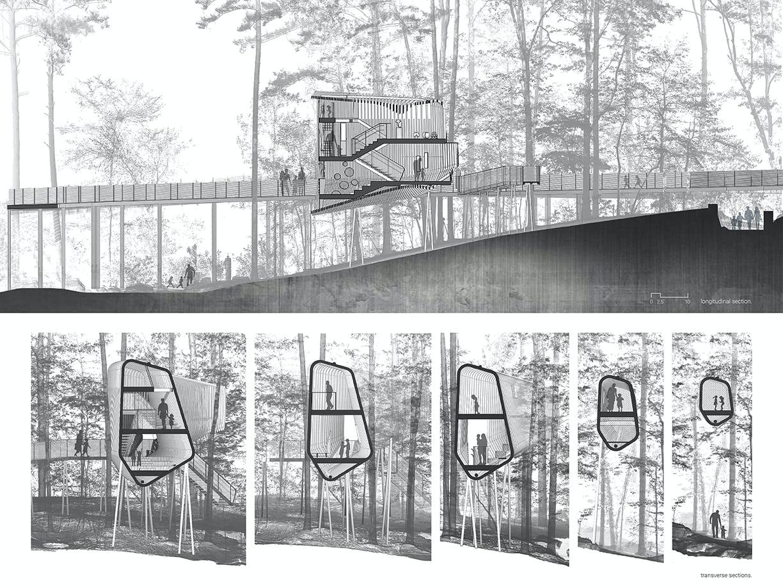 Modus studio garvan tree house sections
