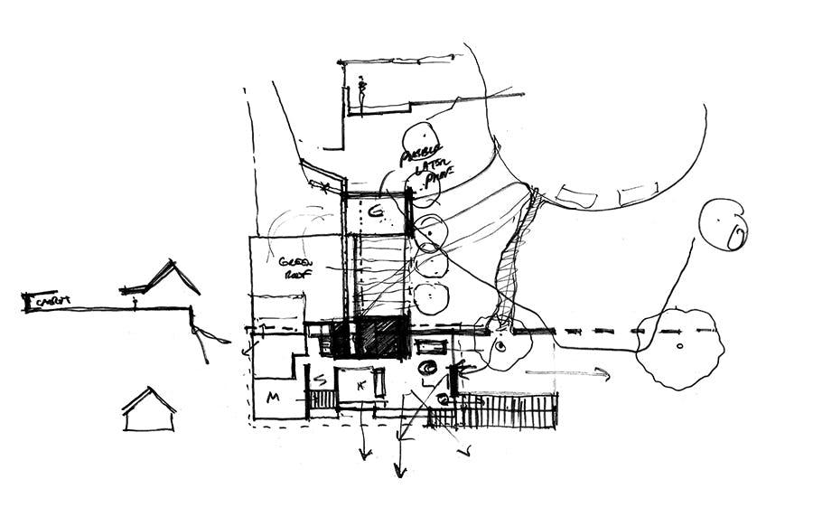 Larsen sketch 04