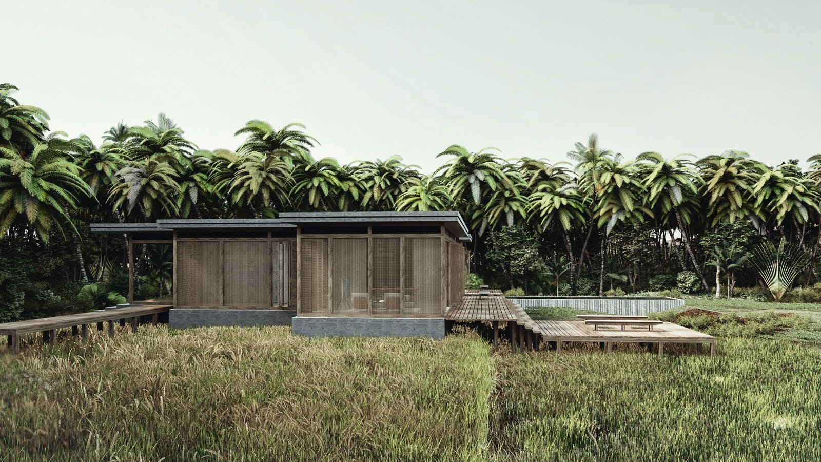 Coconut house 04 s