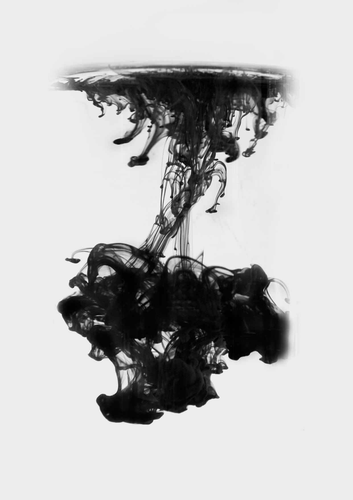 Feifei feng photography floating ink a5