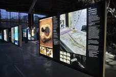 2016 acadia exhibition opening 30119469663 o