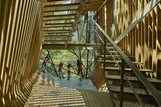 14 modus studio garvan tree house 0361