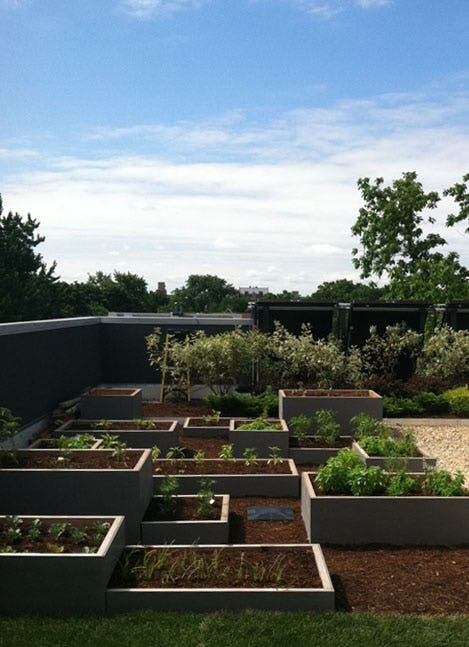Level incorporated roof vegetable garden