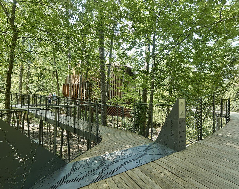 09 modus studio garvan tree house 0673