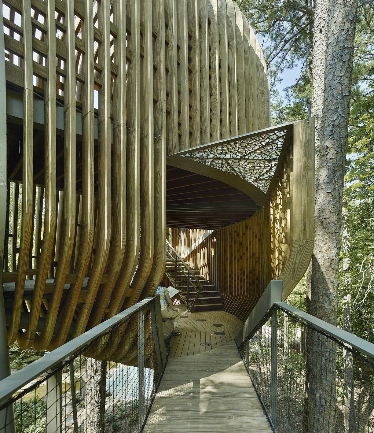 11 modus studio garvan tree house 0771