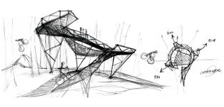 Coler sketch 06