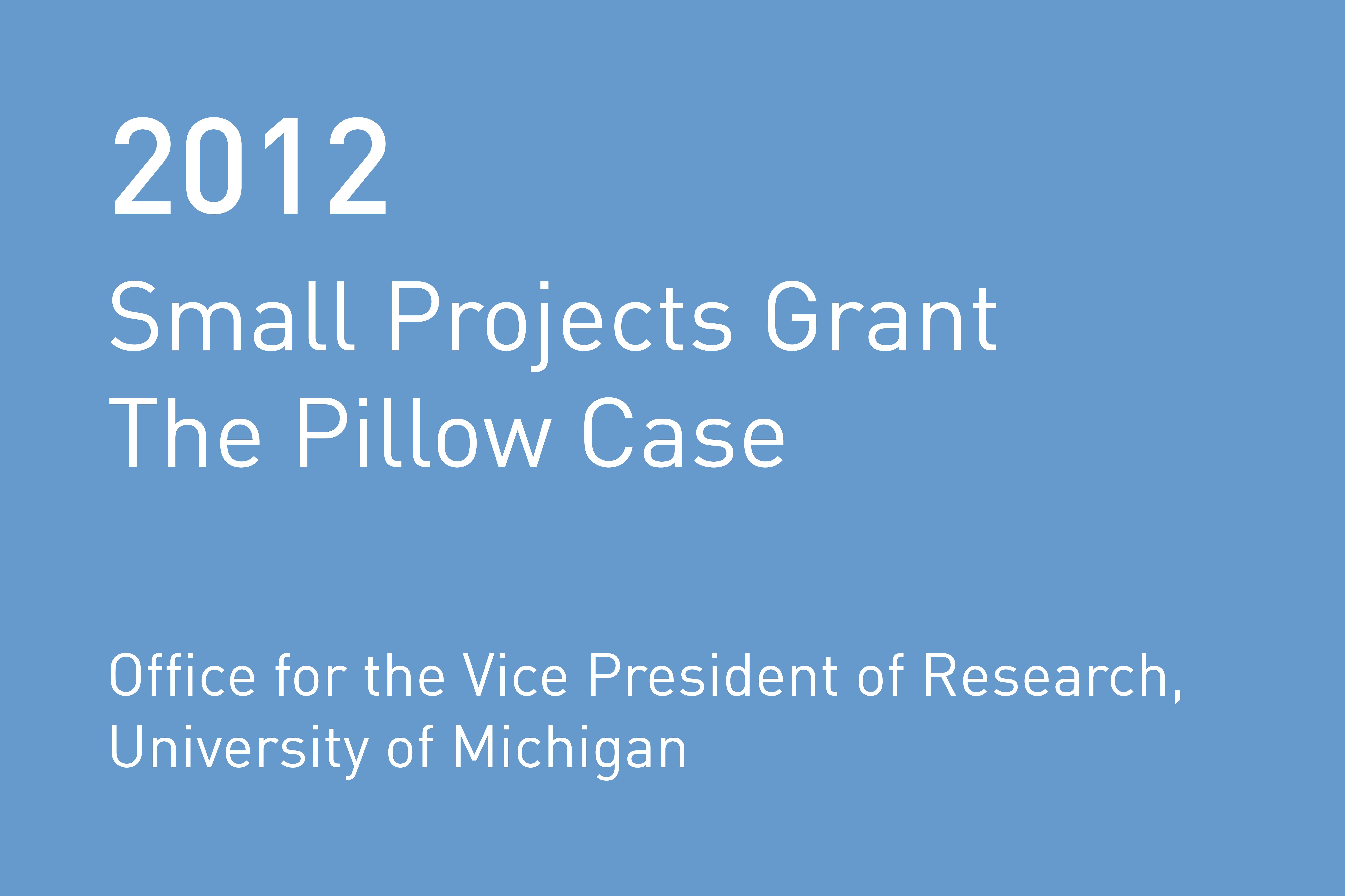 Rvtr 2012 um pillowcase