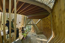12 modus studio garvan tree house 0273
