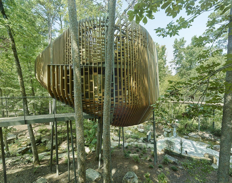08 modus studio garvan tree house 0544