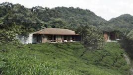 Tea cliff villa holiday home bulathsinhala sri lanka 03