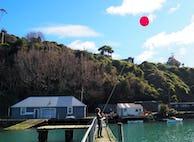 Balloon mapping zero1 w