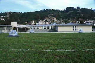 Portola valley korematsu middle school gym living roof