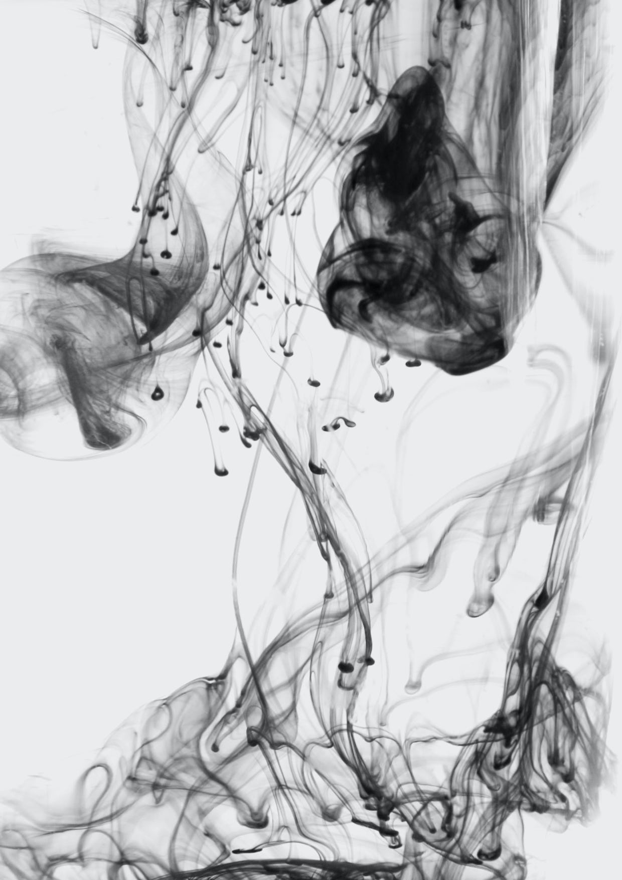 Feifei feng photography floating ink c6
