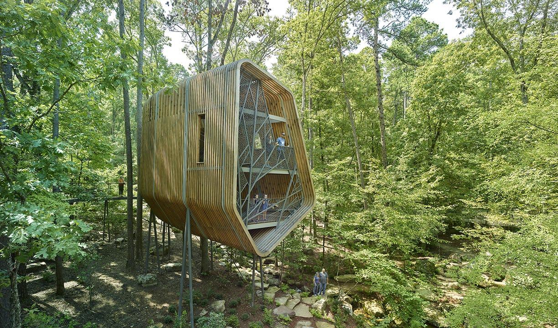 22 modus studio garvan tree house 0538