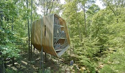 22 modus studio garvan tree house 0538