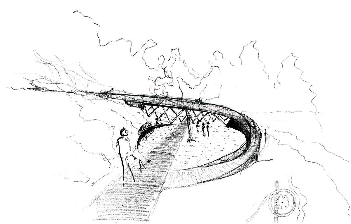 Coler sketch 05