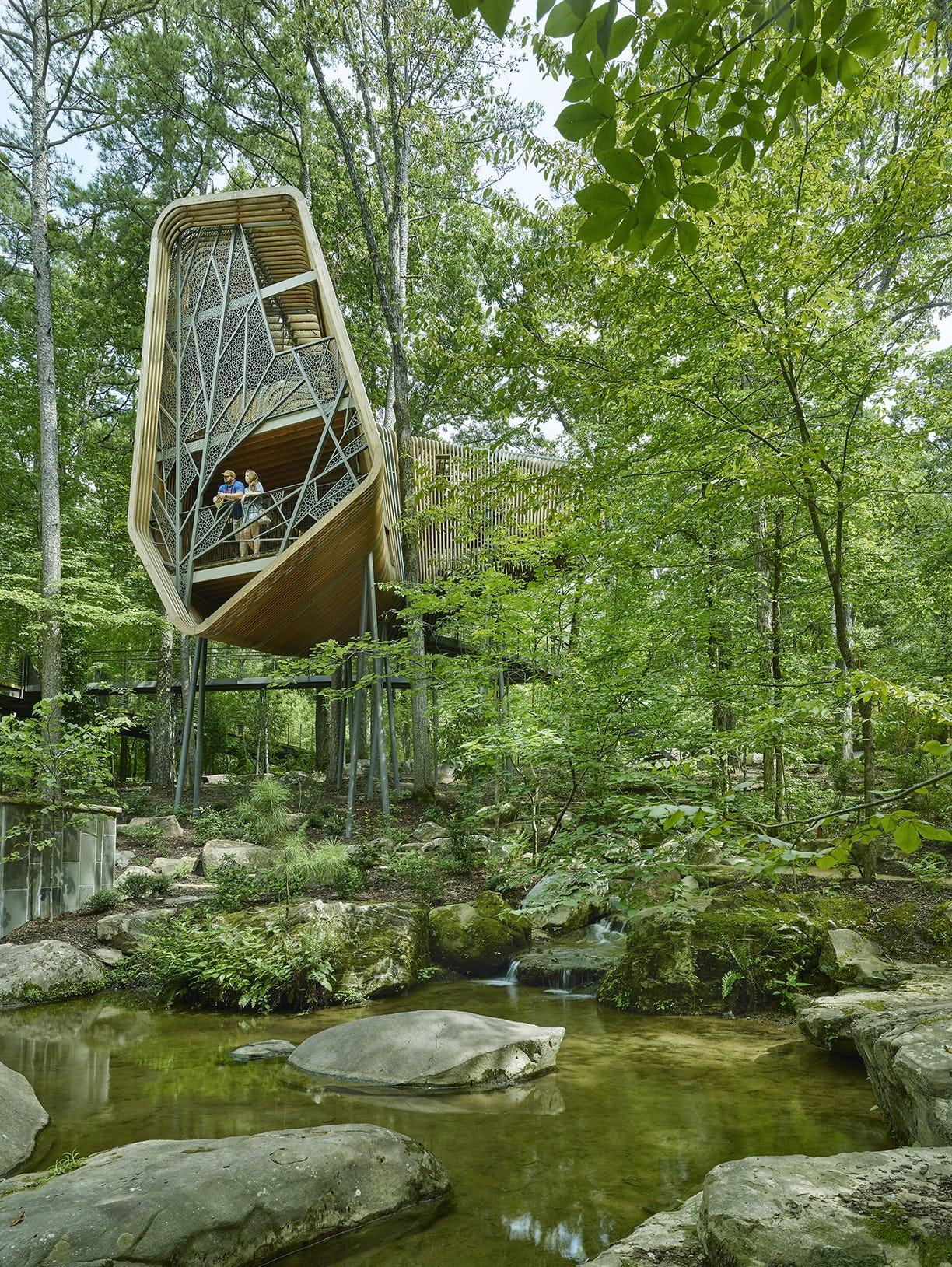 21 modus studio garvan tree house 0489