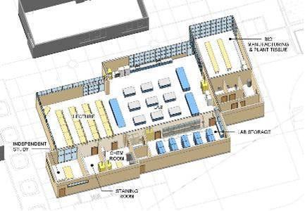 Genentech layout