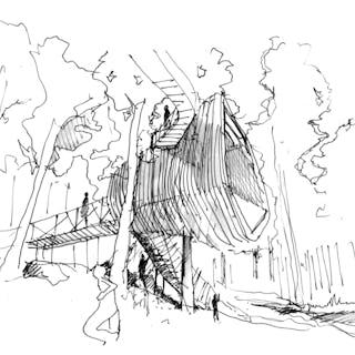 13 49 garvan treehouse sketch 2015 03 26 14
