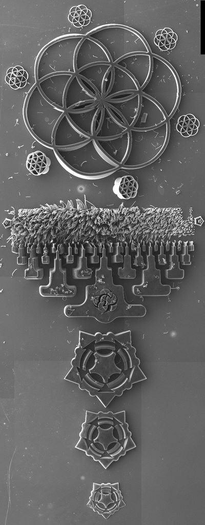 Nano seed3 seedfull stitch top