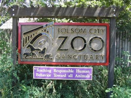 Folsom zoo 1