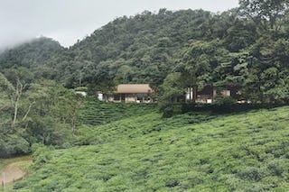 Tea cliff villa holiday home bulathsinhala sri lanka 01